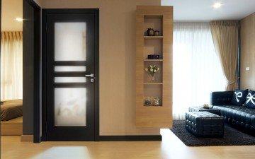 Modern Style Doors