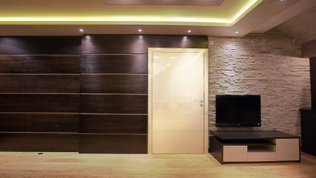 Contemporary Interior Door Designs
